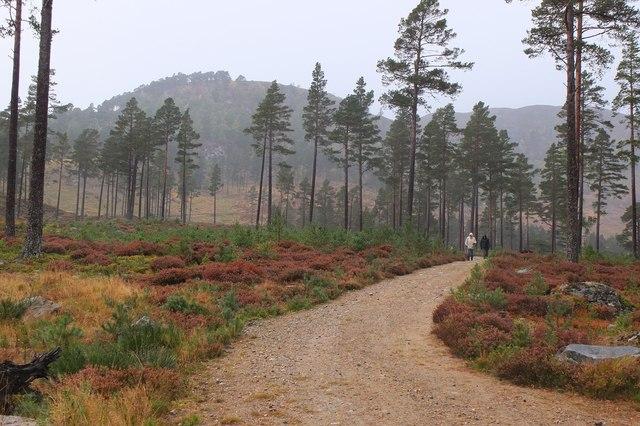 Track near Keiloch