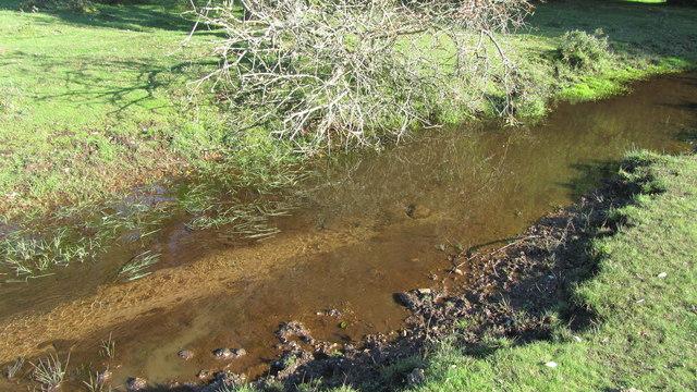 Stream between Buck Hill and Gurnetsfields Furzebrake