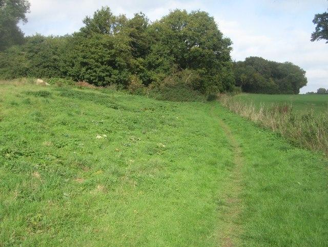 Byway towards Basingstoke