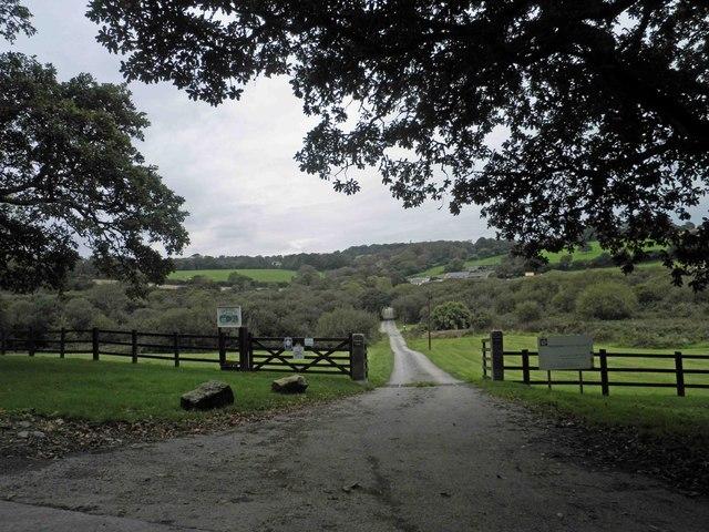 Farm track (and bridleway) to Tregedna Farm