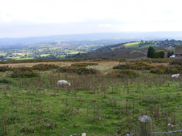 Clee Hill View