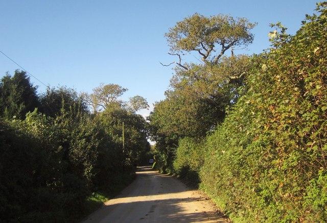 Lane at Trevashmond