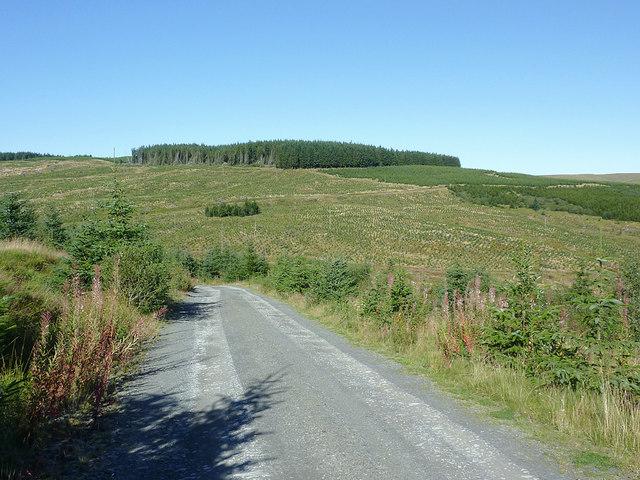 Forestry road in Cwm Nant y Cloddiad, Powys