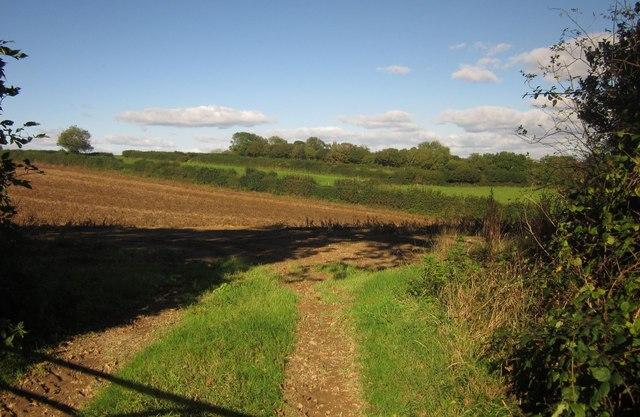 Farmland near Trevashmond