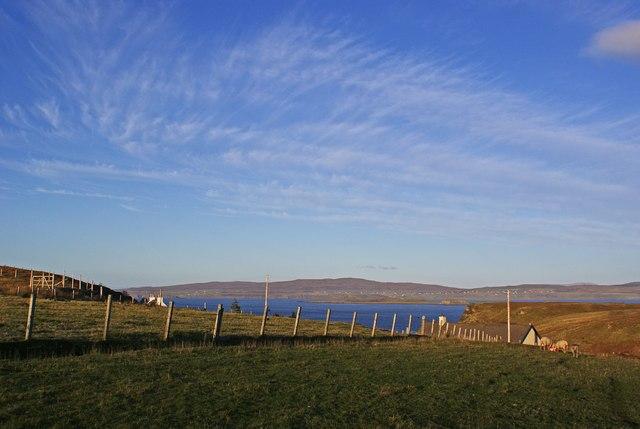 Croft fence and a fine sky