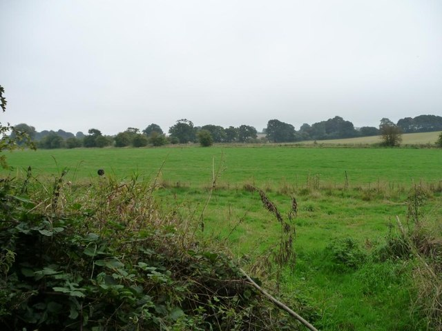 Farmland between the canal and the railway
