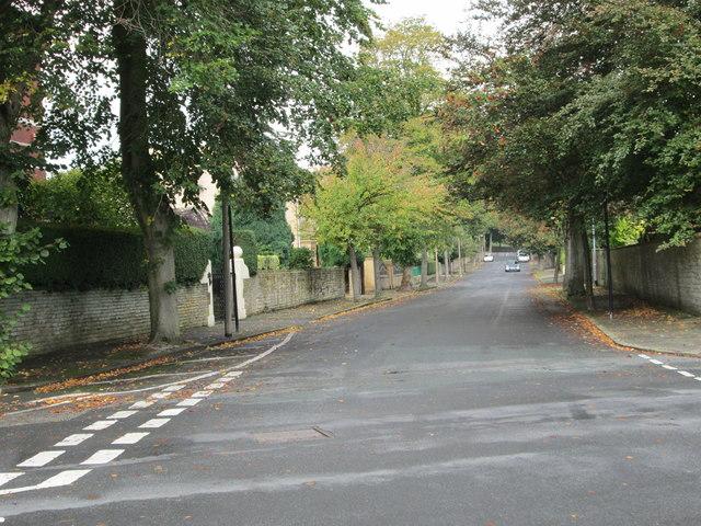 Rawson Avenue - Lawrence Road