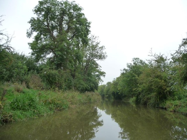 The Kennet & Avon canal near Curret Crown bridge
