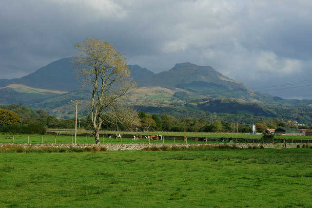 View Towards the Moelwyns