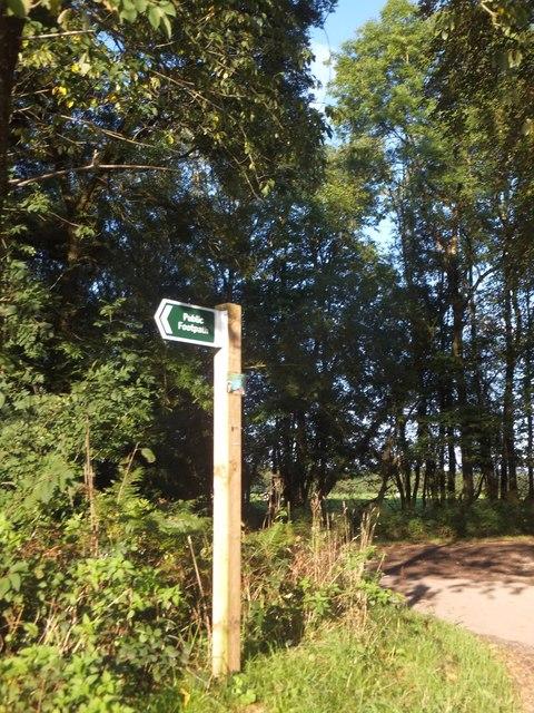 Footpath sign, North Down Plantation