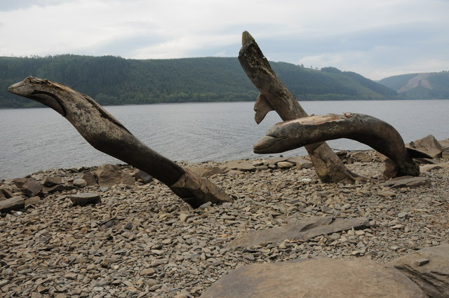 Tree trunks on the shore of Lake Vyrnwy