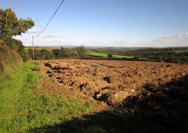 Field, Holwood