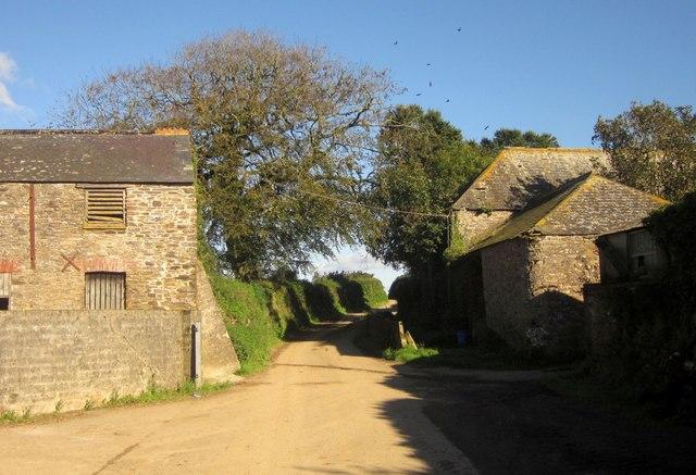 Farm, Holwood