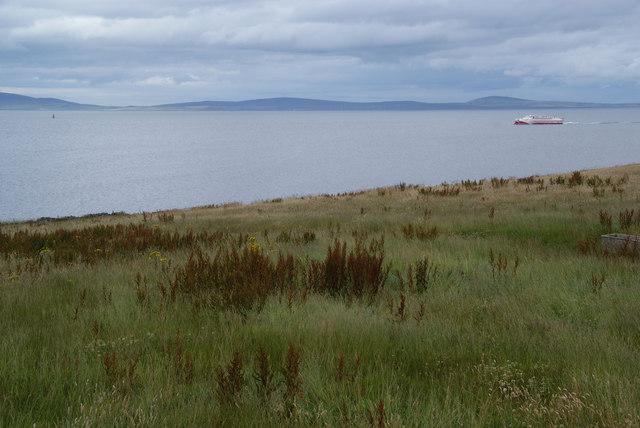 Coastal grassland by The Bu