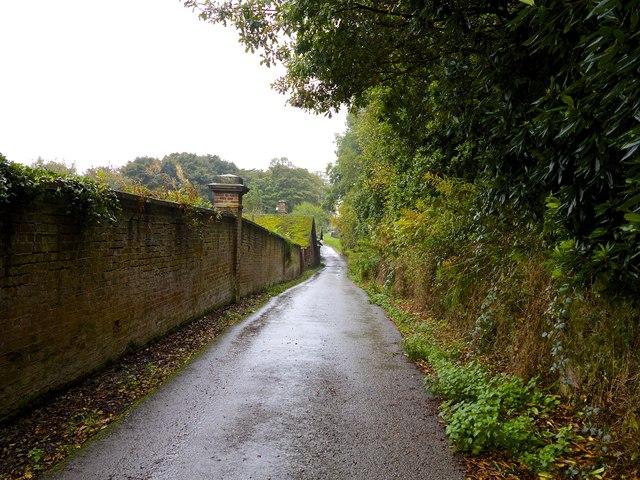 Cicely Haughton School back road