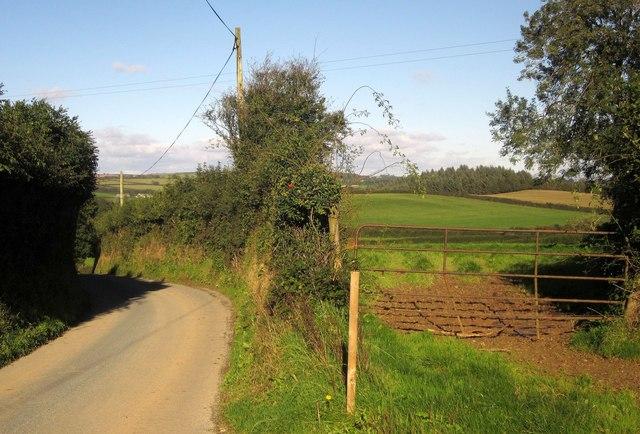 Lane and field, Furslow Farm
