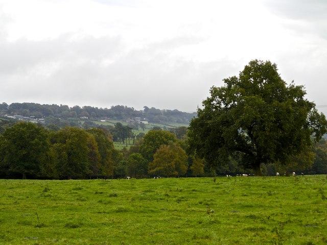 Newstead Farm and the ridgeway near Cheddleton