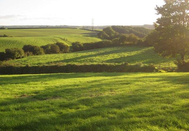 Farmland near Blunts