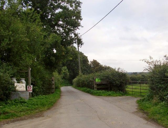 Lane leading to Green Lane Farm