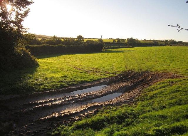 Field near Trehurst