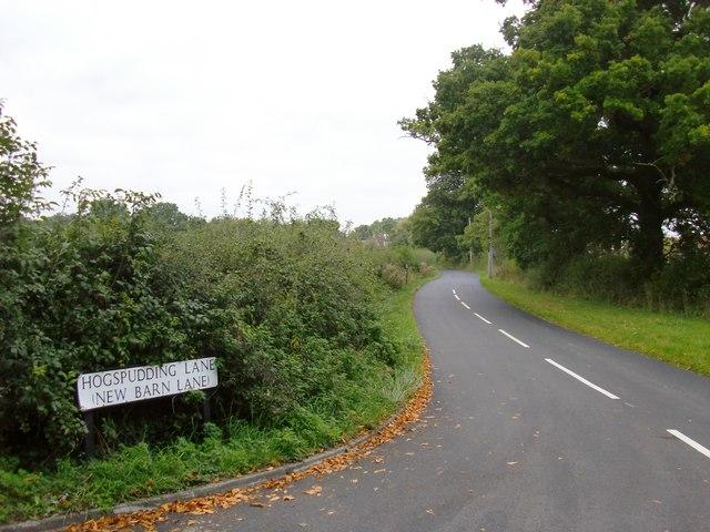 Hogspudding Lane