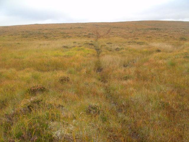 Deer track climbing north ridge of Cnoc an Fheor Mhaol near Crask Inn, Sutherland