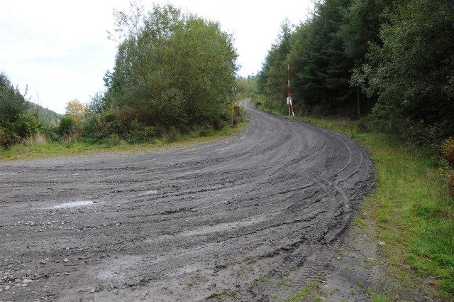 Forest road into Yr Allt-Boeth