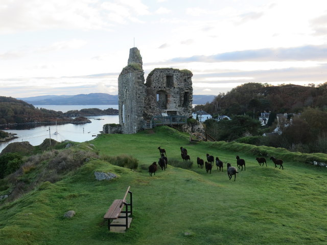 Ruins of Tarbert Castle complete with flock of sheep