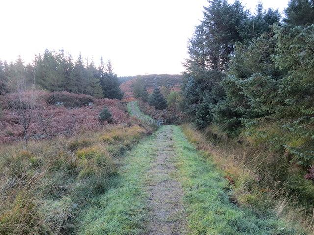 Kintyre Way at Sron Gharbh