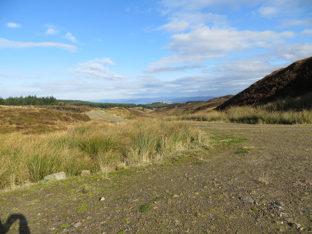 Forestry road and Kintyre Way at Dig Ghorm