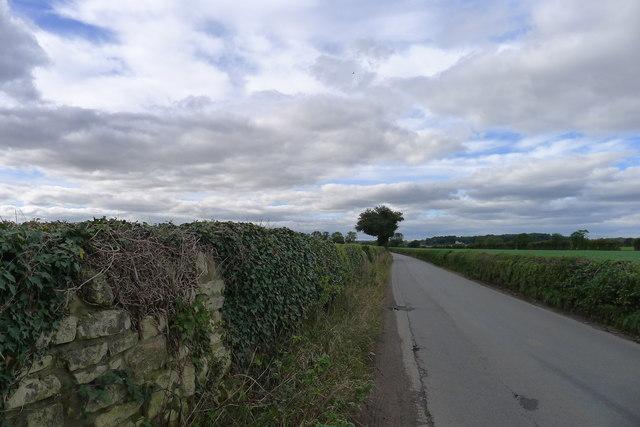 Thorpe Lane leaving Shireoaks