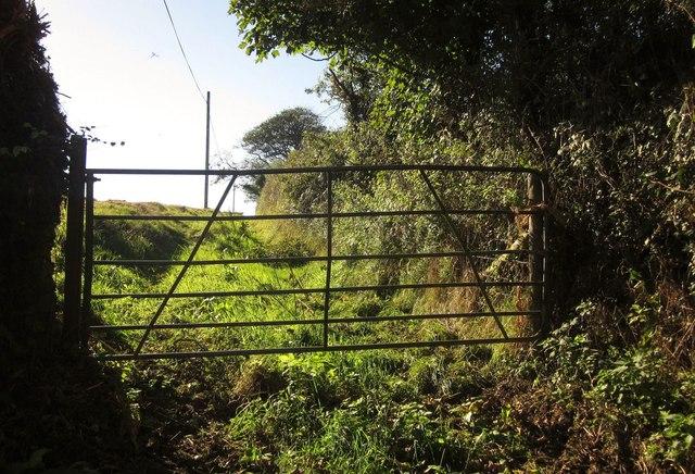 Gate on path near Holwood