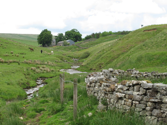 Cottonshope Burn by the sheepfold south of Cottonshope