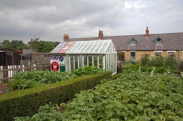 Pit village gardens at Beamish
