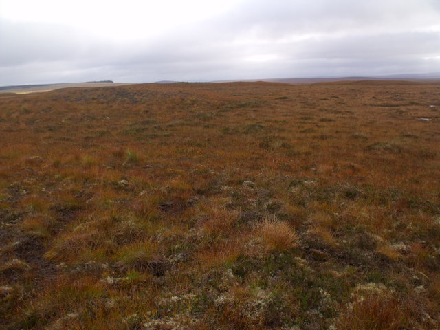 Low ridge on boggy ground west of Crask Inn, Sutherland