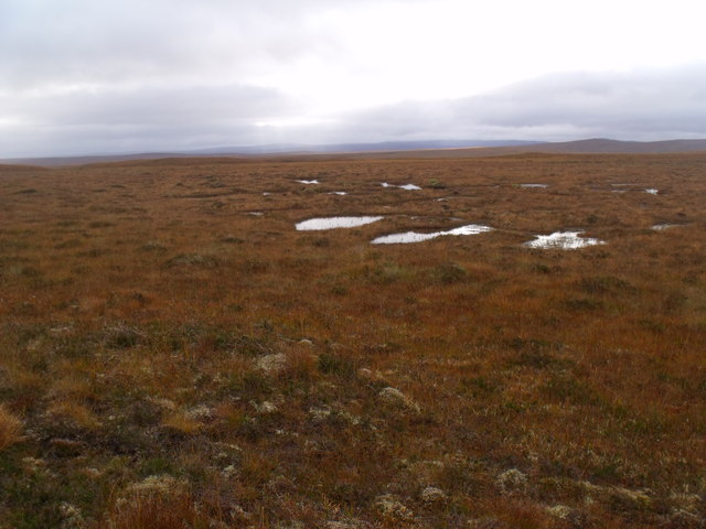 Looking south on boggy ground west of Crask Inn, Sutherland