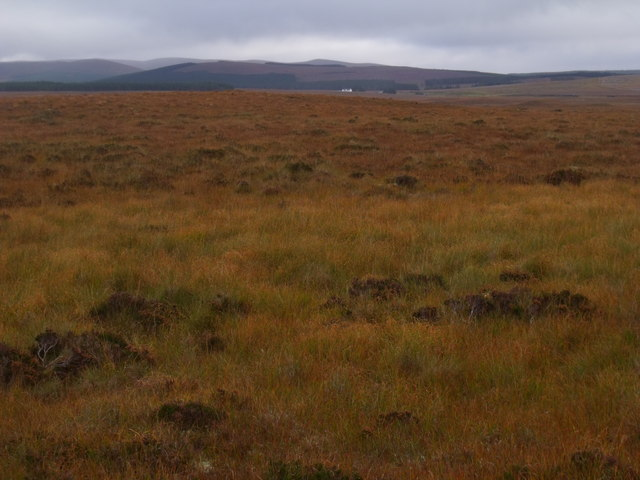Looking east across burncourse near Crask Inn, Sutherland