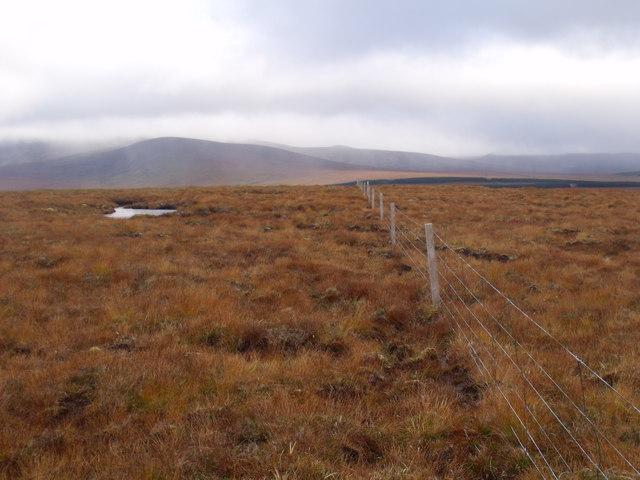 Fenceline heading east near Crask Inn, Sutherland