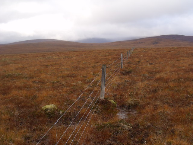 Fenceline heading west near Crask Inn, Sutherland