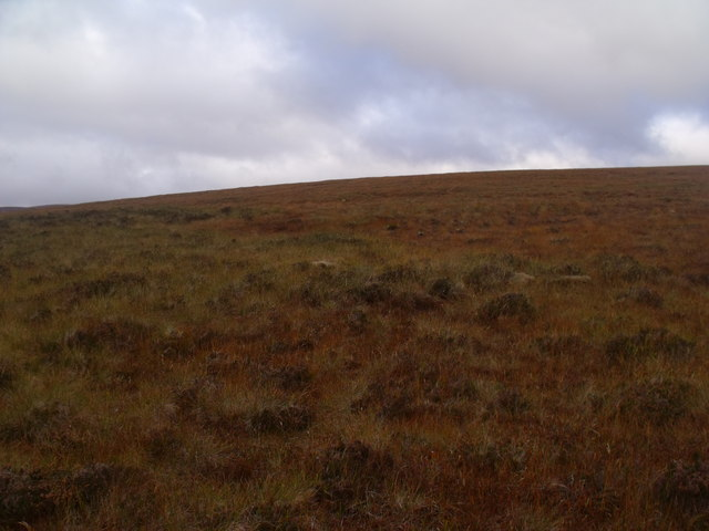 Western slopes of Cnoc an Alaskie near Crask Inn, Sutherland
