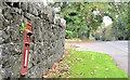 J0848 : EIIR wall box, Tullylish (2) by Albert Bridge