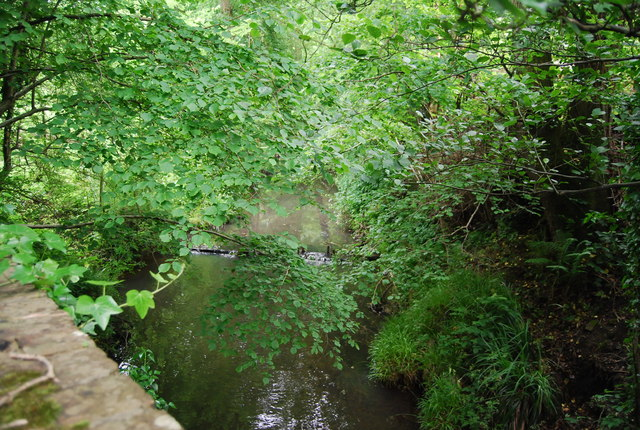 Willingford Stream