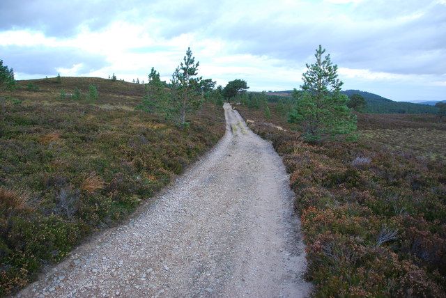 Hill track to Nethy Bridge