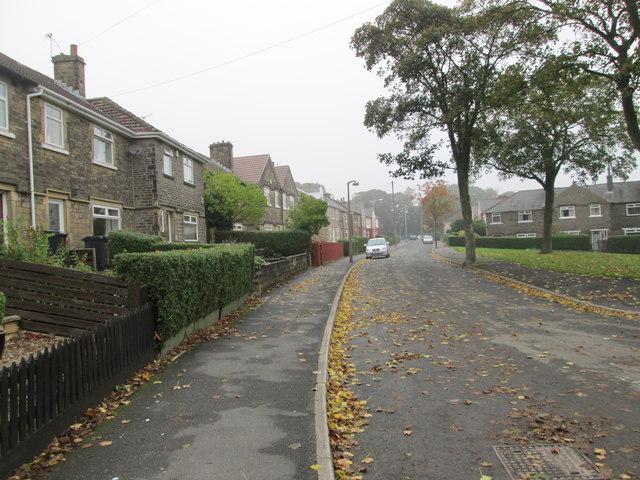 Beechwood Drive - Beechwood Road