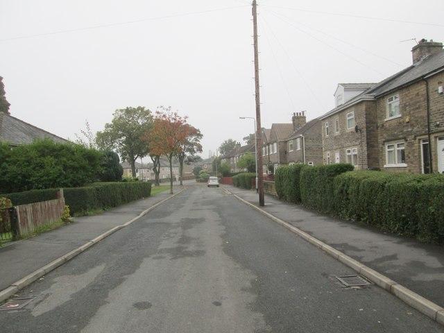Beechwood Drive - looking towards Beechwood Road
