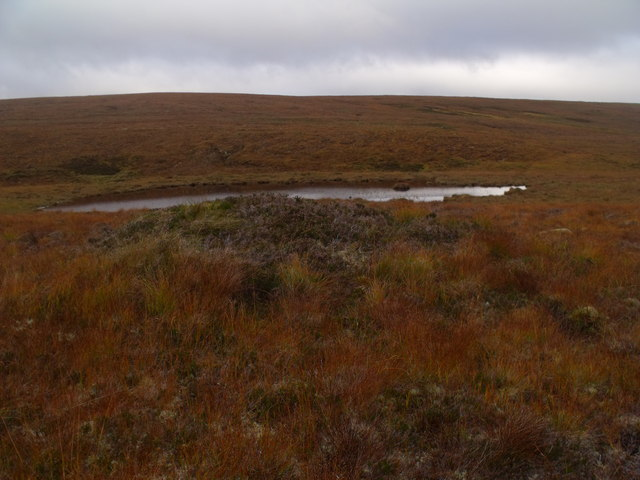 Vegetatious pimple on low dry ridge near Allt an Ulbhaidh west of Crask Inn, Sutherland