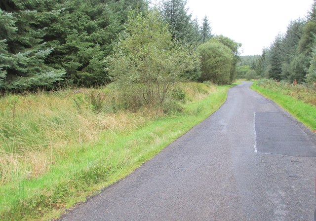The road through the forest to Loch Ettrick