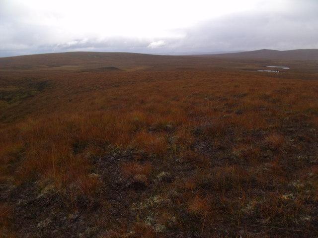 Low dry ridge south-west of Cnoc an Alaskie near Crask Inn, Sutherland