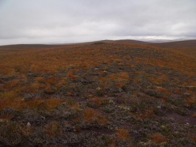 Vegetatious pimple at high point of ridge by Allt an Ulbhaidh