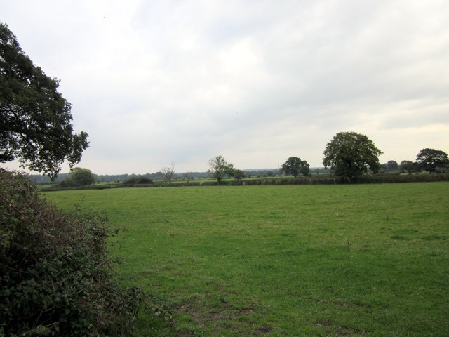 View from Lower  Road